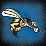 Sugar Land Skeeters, a member of the TCRN-Sugar Land Network | baseball, american baseball, constellation field, skeeters, birthday party, swimming, birthday packages, food, entertainment,